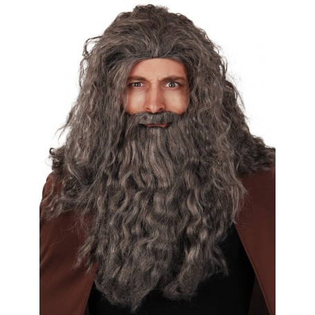 Long Grey Wig with Mo and Long Beard