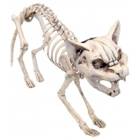 Screaming Skeleton Cat w/Light Up Eyes