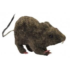 9 Inch Laboratory Rat