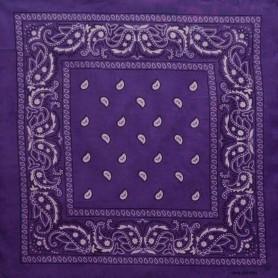 Paisley Bandana - Purple