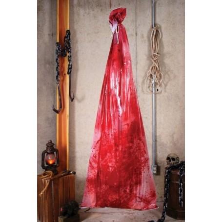 Bloody Body in Bag