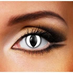 Eye Fusion 1 Day - White Cat Eye
