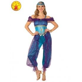 Genie Lady Costume