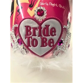 Bride to Be Tiara and Veil